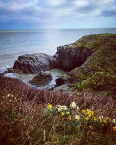 A dog walk along the Ceredigion Coast Path from Tresaith to Aberporth