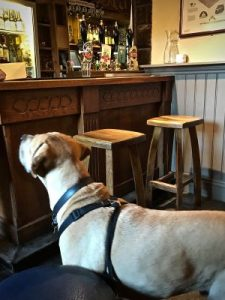 a warm welcome at a traditional dog friendly pubin High Peak