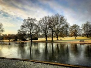 A Dog Walk Steeped in History at Verulamium Park in St. Albans.